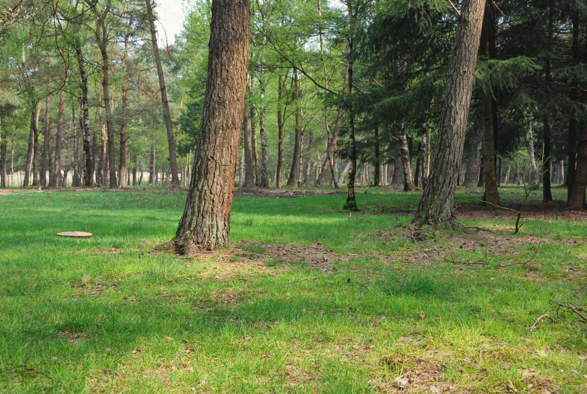 Natuurbegraafplaats_Heidepol
